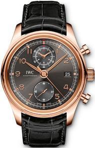 IWC IW390405